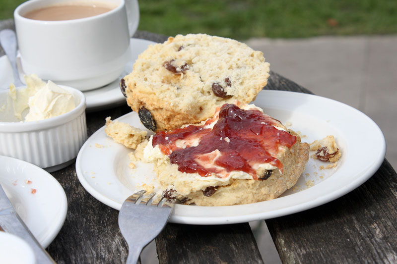 Clotted cream, fruit scone, strawberry jam and a pot of tea at the National Trust café, Corfe Castle.