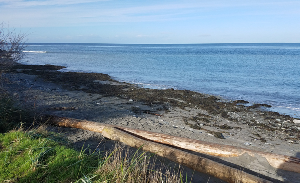 View of North Beach, Port Townsend from the parking lot.