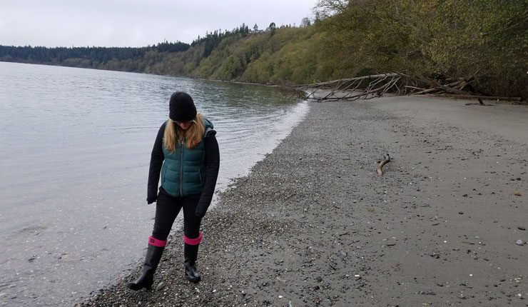 Searching For Sea Gl On Bush Point Beach Whidbey Island Washington