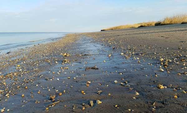 Woodland Beach Delaware
